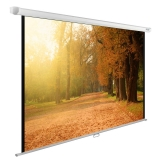 Экран для проектора Cactus Wallscreen CS-PSWE-200x125 (200x125cm, 16:10, настенный)